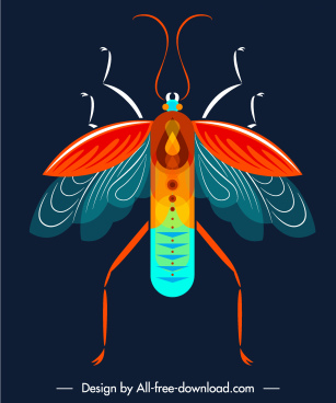 insect icon closeup design colorful flat symmetric sketch
