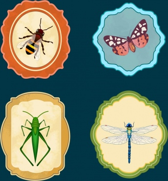 insect icons collection bee butterfly grasshoper dragonfly icons