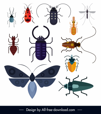insect species icons colored flat design