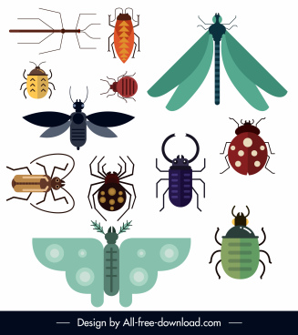 insect species icons colorful flat design