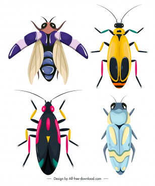 insecta bug icons colorful flat sketch