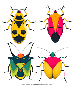 insecta bugs species icons colorful flat sketch