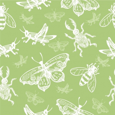 insects background various types decor repeating sketch