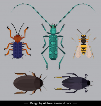 insects species icons colored flat sketch
