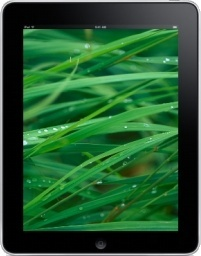 iPad Front Grass Background