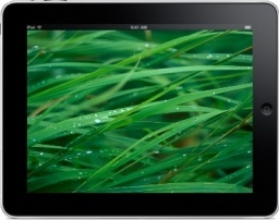 iPad Landscape Grass Background