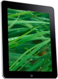 iPad Side Grass Background