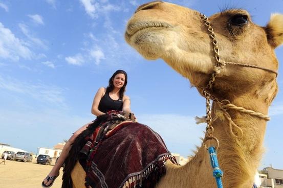 iraq camel woman