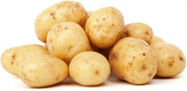 isolated potatoes
