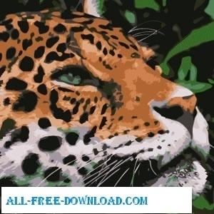 jaguar   vector  encapsulated postscript eps eps vector illustration graphic art