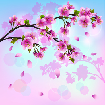 japan cherry blossoms free vector