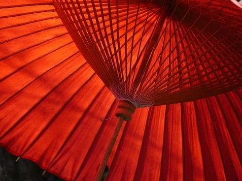 japan umbrella tea