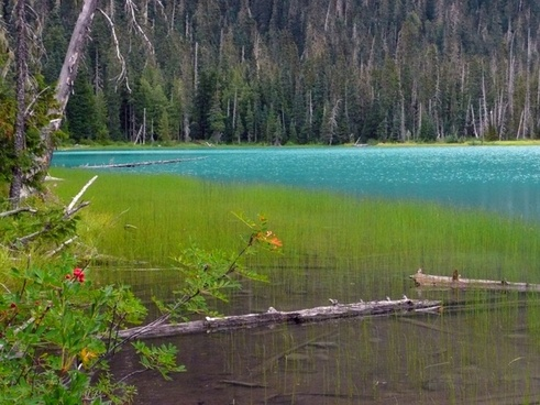 joffre lake british columbia canada