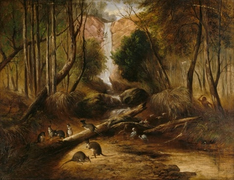john prout waterfall forest