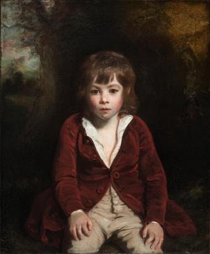 joshua reynolds boy child