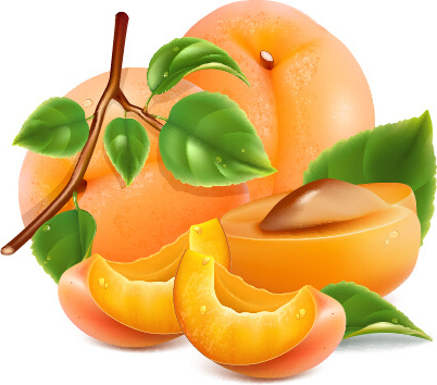 juicy peach and green leaf vector