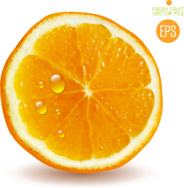 juicy slice oranges vector set