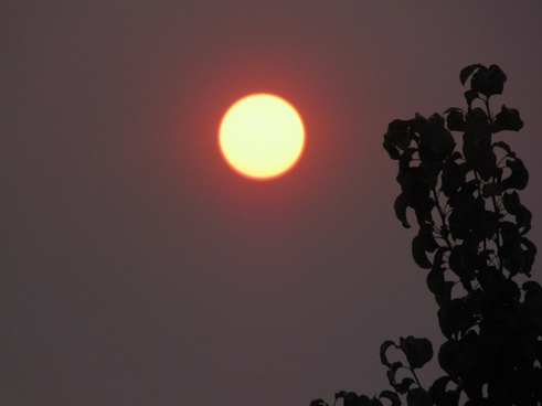 july 6 2015 forest fire red sun