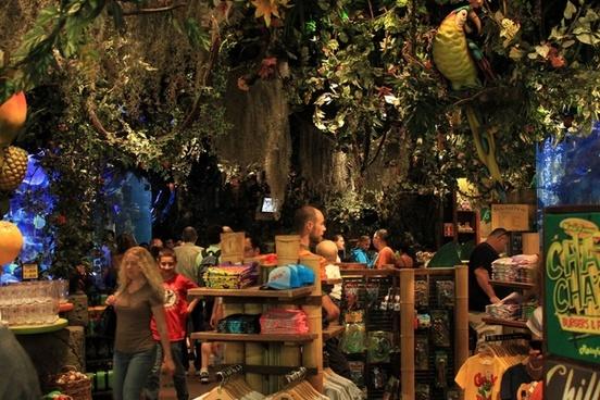 jungle themed shop in mall in minneapolis minnesota