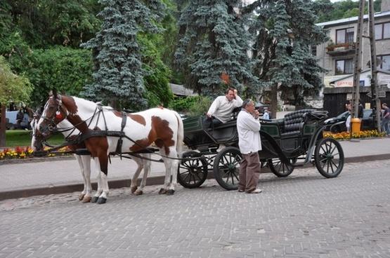 kazimierska cab
