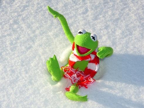 kermit frog fun