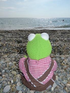 kermit frog sea