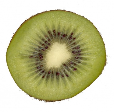 kiwi fruit scanners