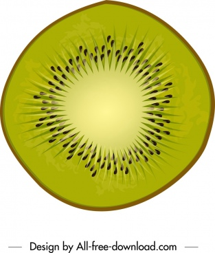 kiwi icon closeup flat green slice design
