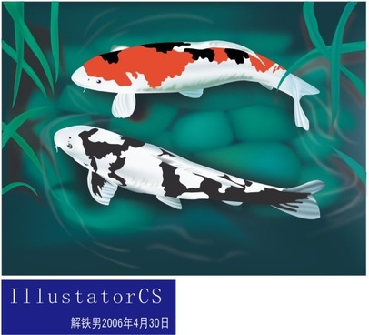 koi fishes drawing colorful ornament realistic style