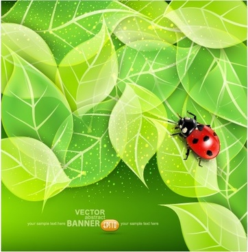 ladybug with leaves vector backgrounds