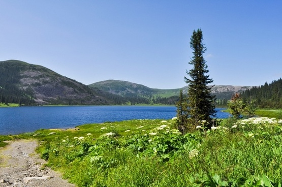 lake field grass