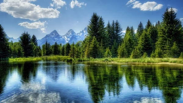 lakes forests mountains