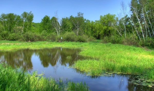 landscape and pond at hoffman hills state recreation area wisconsin