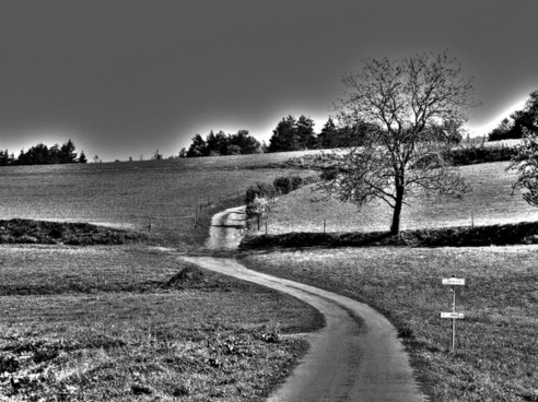 landscape black and white