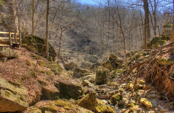 landscape by the caves at maquoketa caves state park iowa
