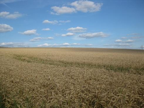 landscape freedom sky