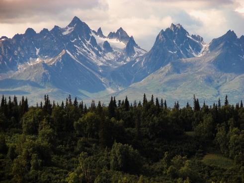 landscape in alaska with a beautiful snowpeak mountain