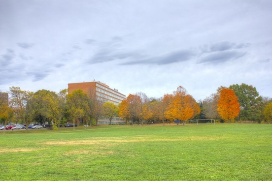 landscape of the park in madison wisconsin