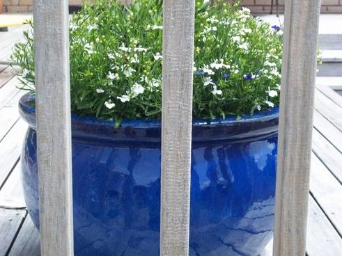 large blue garden pot