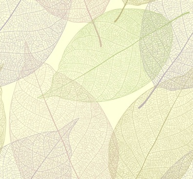 leaf background transparent design flat colored sketch