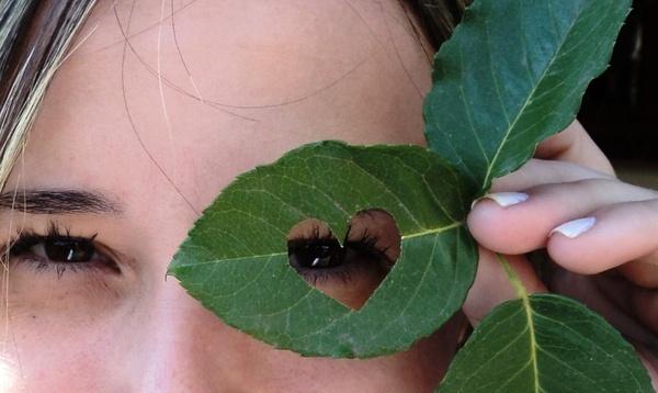 leaf eyes green leaves