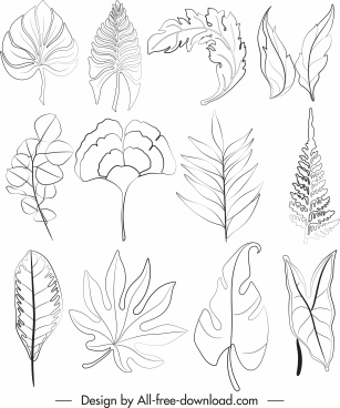leaf icons black white handdrawn sketch
