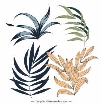 leaf icons classical handdrawn sketch