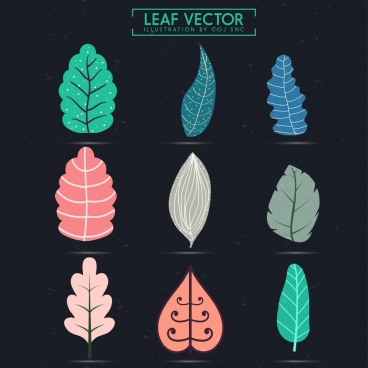leaf icons collection colored shapes sketch isolation