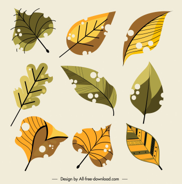 leaf icons colored classic handdrawn sketch