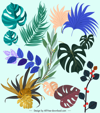 leaf icons colorful shapes sketch