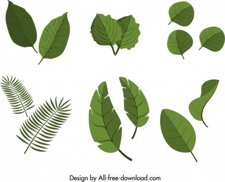 leaf icons sets green decor 3d flat design