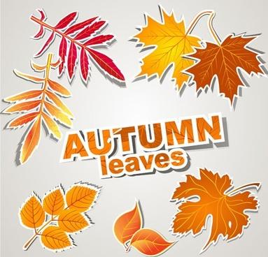 leaf label 01 vector