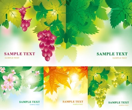 leaves flowers fruits vector