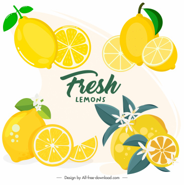 lemon icons colored bright yellow slices sketch